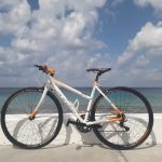 Orange Coral XS Alubike Onix